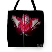 Red And White Parrot Tulip Tote Bag