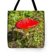 Red And White Potted Toadstool Tote Bag