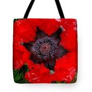 Red Poppy Photograph Tote Bag