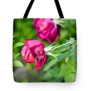 Red Rose Bud Tote Bag