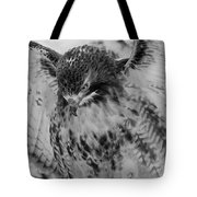 Red-tailed Hawk In Snow Tote Bag