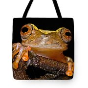 Ross Allens Treefrog Tote Bag