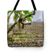 Ruins Of  Machu Picchu Tote Bag