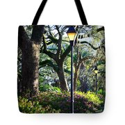 Savannah Spring Perspective Tote Bag