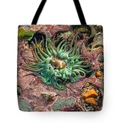 Sea Anemones Tote Bag