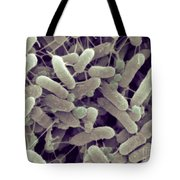 Sem Of Serratia Liquefaciens Tote Bag