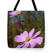 Sensation Cosmos Bipinnatus Fully Bloomed Pink Cosmos At Garde Tote Bag