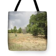 Show Low Landscape Tote Bag