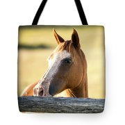 Single Horse Tote Bag