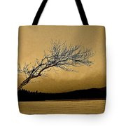 Solitude In A New Key Tote Bag