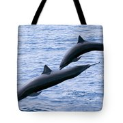 Spinner Dolphins Tote Bag