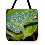 Spiny Glass Frog Tote Bag