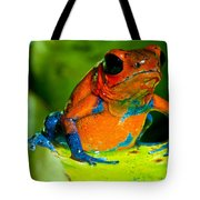 Strawberry Poison Dart Frog Tote Bag