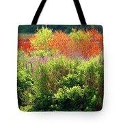 Summer Colors Tote Bag