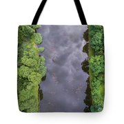 Summer Landscape. Green Trees At Riverbank In Poland. Tote Bag
