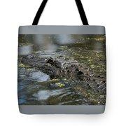 Sunbathing Gator Tote Bag