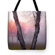 Sunrise Trees Fog Tote Bag