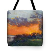 Sunset At Gratwick Waterfront Park Tote Bag
