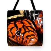 Surinam Coralsnake Tote Bag