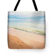 Tangalooma Island Beach In Moreton Bay.  Tote Bag