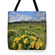 Teton Balsam Root Tote Bag