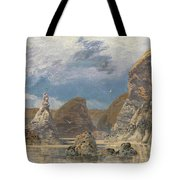 The Shallows Of Hareslade Cove Tote Bag