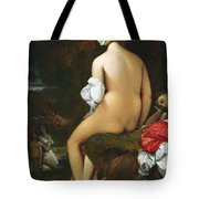 The Small Bather Tote Bag