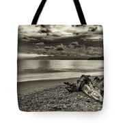 The Trunk Tote Bag