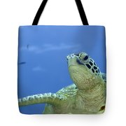 Turtle  Tote Bag