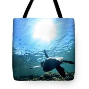 Turtles View Tote Bag