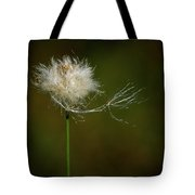 Tussock Cottongrass Tote Bag