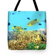 Underwater Panorama Tote Bag