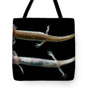 Valdina Farms Salamander Tote Bag
