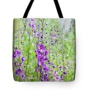 Verbascum Phoeniceum In The Meadow Tote Bag