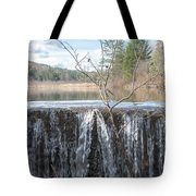 Vermont Swamp Tote Bag