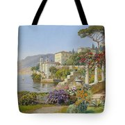 View Of A Lake In The South Tote Bag