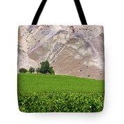 Vines Contrasting With Chiles Atacama Desert Tote Bag