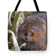Water Vole Tote Bag