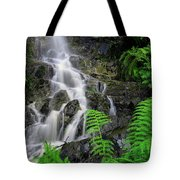 Waterfall In Cradle Mountain Tote Bag