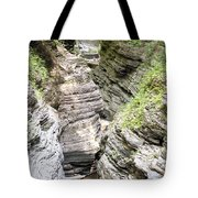 Watkins Glen New York Tote Bag