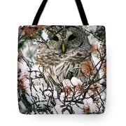 What A Hoot Tote Bag