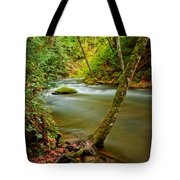 Whatcom Creek Tote Bag by Idaho Scenic Images Linda Lantzy
