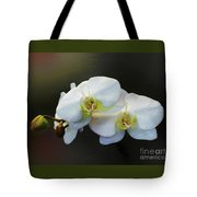White Orchid - Doritaenopsis Orchid Tote Bag