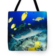 Whitetip Reef Shark Tote Bag