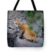 Wild Fox Near Den In Wilderness Animals Tote Bag