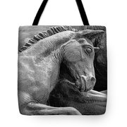 Wild Mustang Statue I V Tote Bag