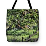 Willets Barn Tote Bag