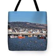 Winter Harbour - Lyme Regis Tote Bag
