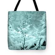Winter Wonderland In Switzerland Tote Bag