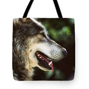 Wolf Portrait Tote Bag
